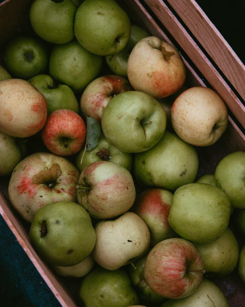 sbriciolata pommes et ricotta recette